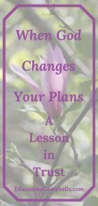 Purple flower in background with title, When God Changes Your Plans, A Lesson in Trust